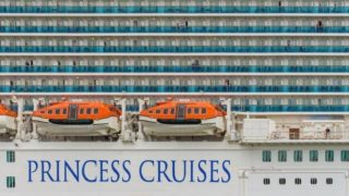 princess cruisesと書かれた豪華客船の画像