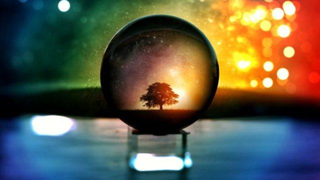 水晶玉に映る大きな木の画像