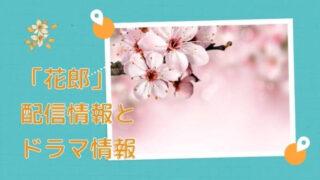「花郎」配信情報とドラマ情報