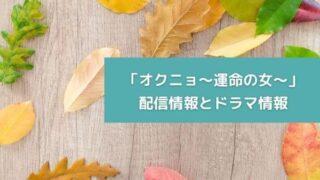 「オクニョ~運命の女~」配信情報とドラマ情報